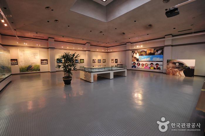 Музей фольклора и естественной истории Чечжу (제주도민속자연사박물관)33