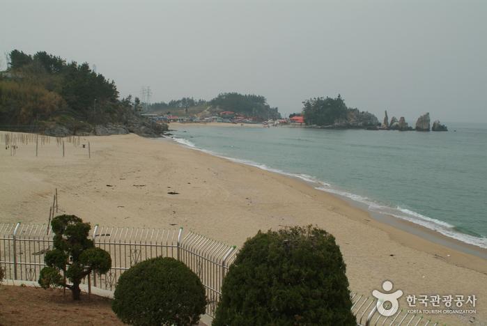 증산해변(증산 해수욕장)