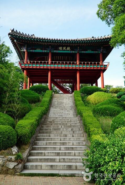 大邱達城公園(대구 달성공원)