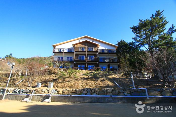 Geoje Youth Hostel (거제 유스호스텔)