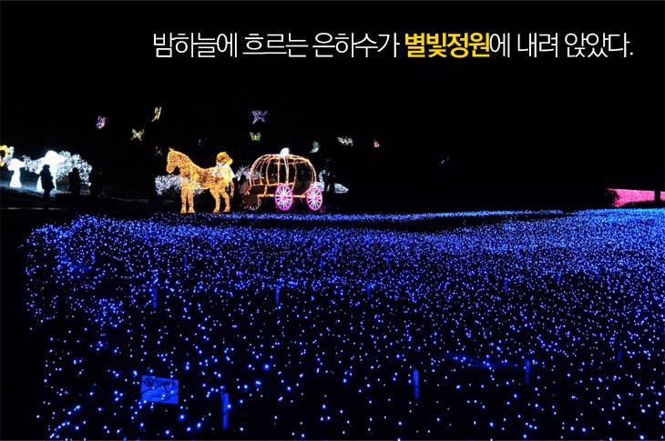 밤하늘에 흐르는 은하수가 별빛 정원에 내려 앉았다.