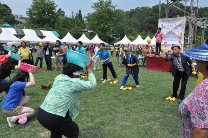 Yeoju Geumsa Oriental Melon Festival (여주 금사참외축제)