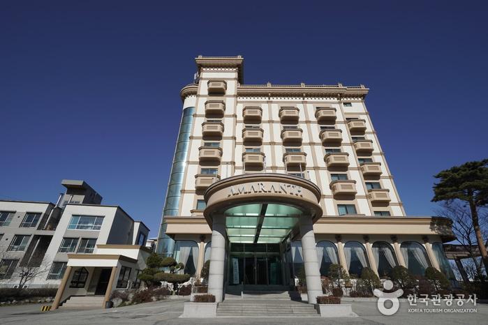 ホテルアマランス[韓国観光品質認証](호텔 아마란스[한국관광품질인증/Korea Quality])