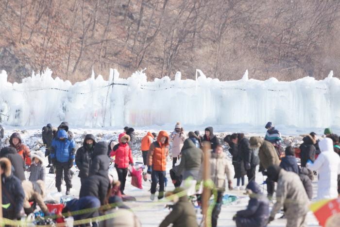 Gapyeong Singsing Songeo Festival (가평씽씽송어축제)
