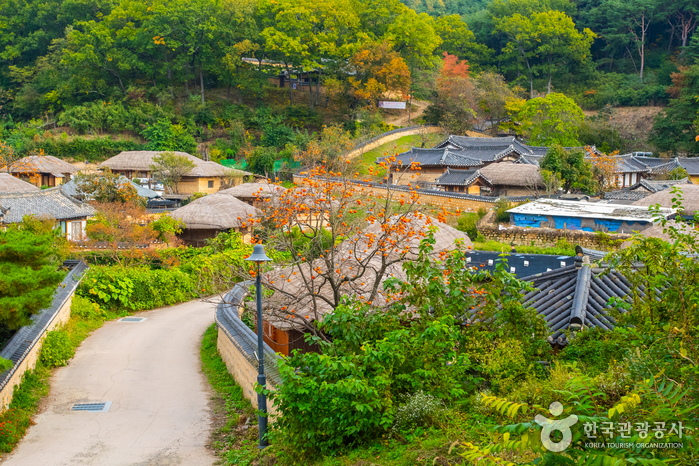 Village Traditionnel Yangdong [Patrimoin...