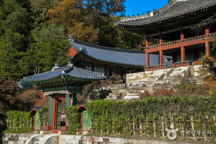 Palacio Changdeokgung y Jardín Huwon (창덕궁과 후원) [Patrimonio Cultural de la Humanidad de la Unesco]4