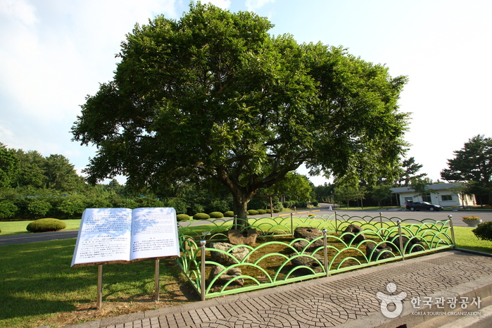 Jeju Olle Trail - Route 16 (Gonae - Gwangnyeong Olle) (제주올레 16코스 (고내-광령))
