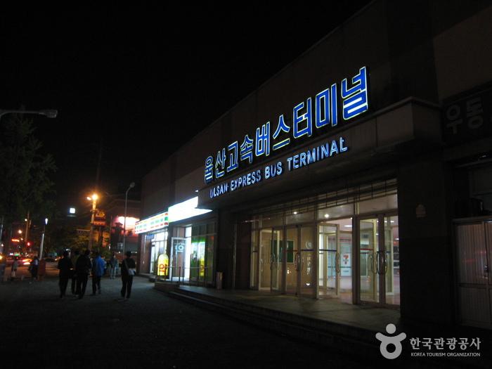 Ulsan Express Bus Terminal (울산고속버스터미널)