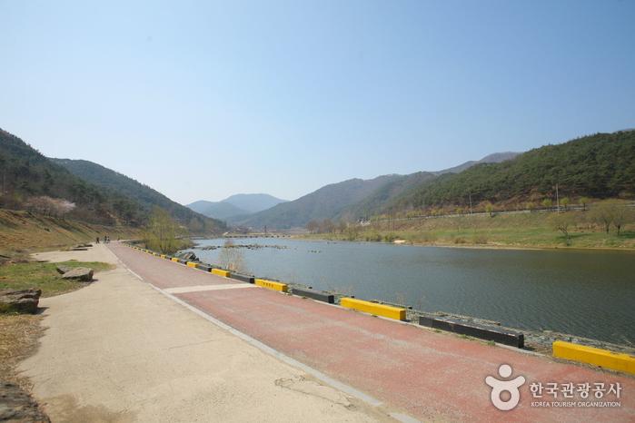 섬진강변 유원지