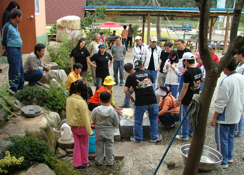Pyeongchang Cirsium ...