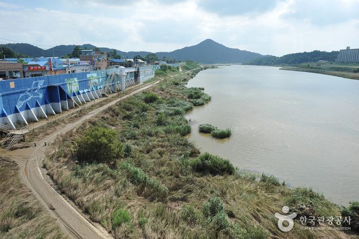 Yeongsangang River (...