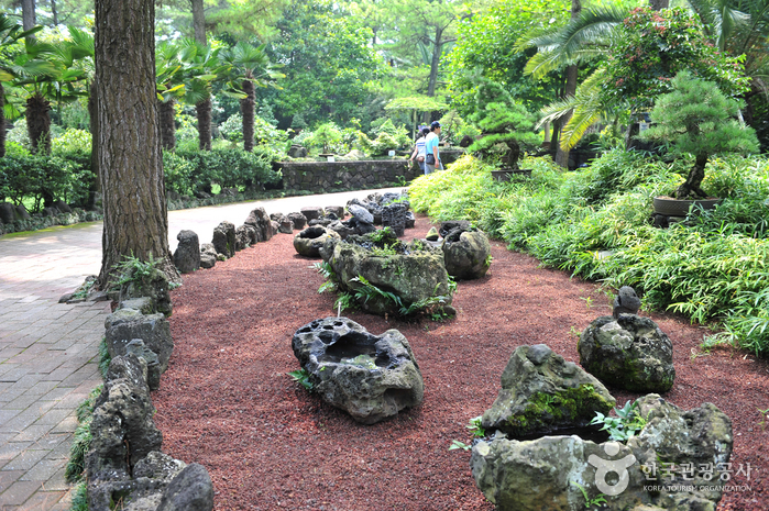 Парк Халлим (한림공원)