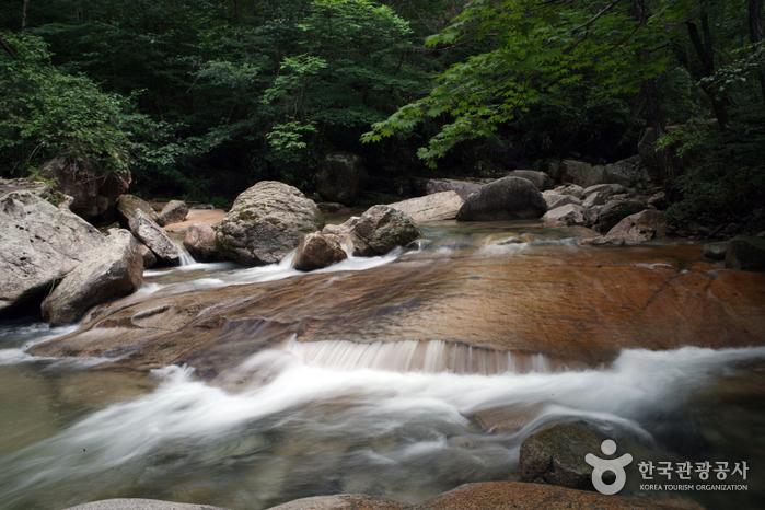 Vallée Daeyasan Yongchu (대야산 용추계곡)