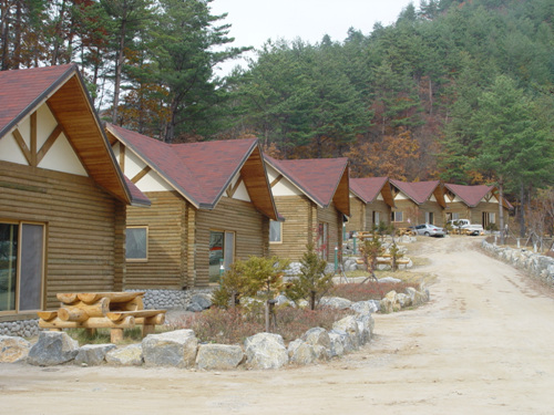 Taebaek Highland Natural Recreational Forest (태백고원자연휴양림)