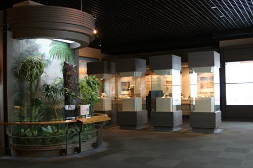 Музей каменного угля в г. Тхэбек (태백석탄박물관)4