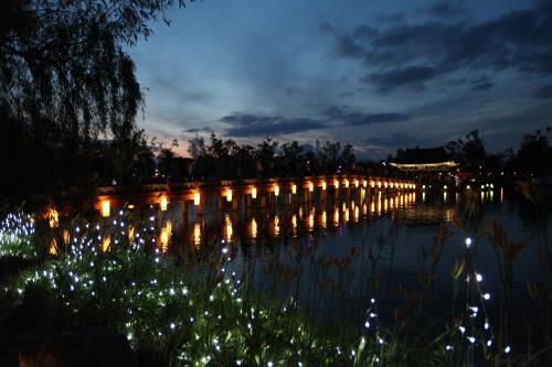 Buyeo Seodong Lotus Festival (부여서동연꽃축제)
