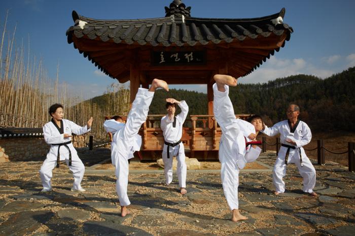 Taekwondowon (국립태권도원)
