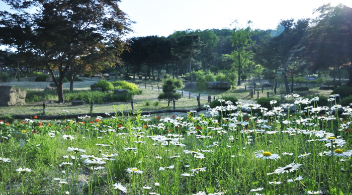 산들소리수목원 사진4