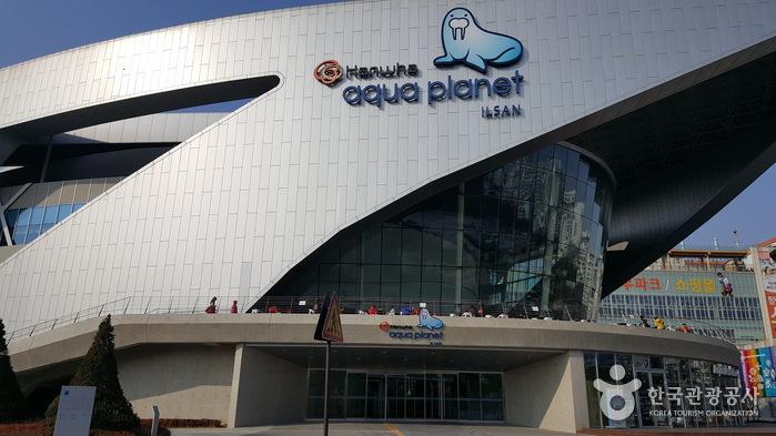 一山Aqua Planet海洋世界(아쿠아플라넷 일산)