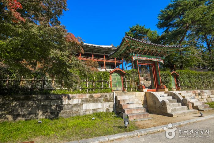 Palacio Changdeokgung y Jardín Huwon (창덕궁과 후원) [Patrimonio Cultural de la Humanidad de la Unesco]3