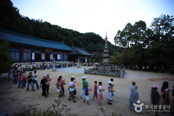 김천직지 나이트투어 2018