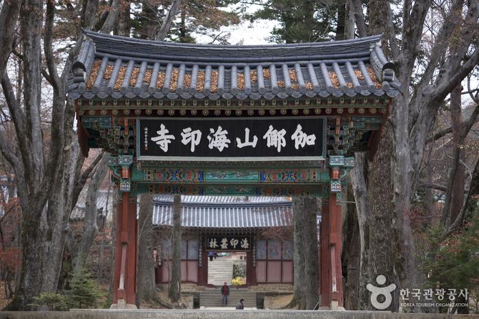 Haeinsa Temple Stay (해인사 산사체험)