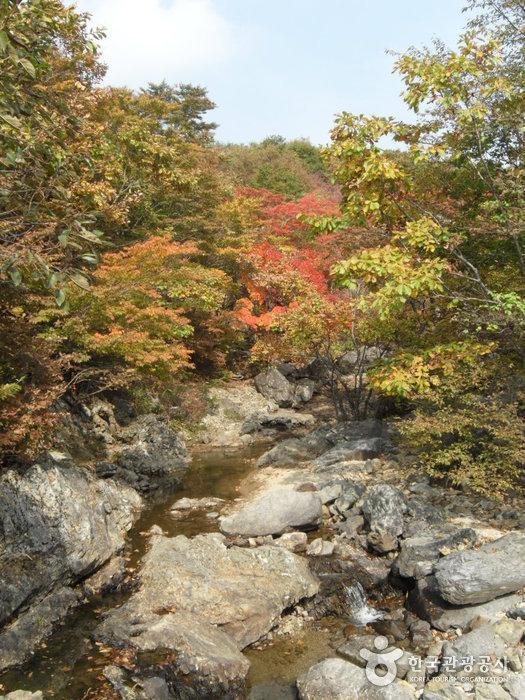 가지산도립공원(밀양)