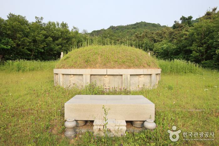진천 이영남 묘소