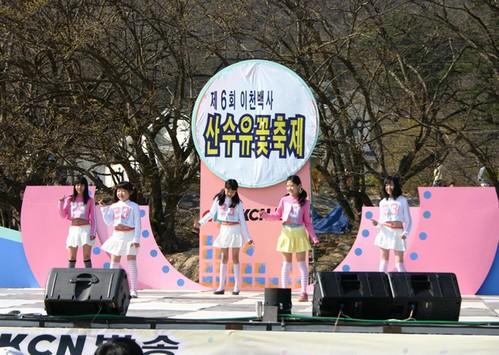 Festival de las Flores de Sansuyu Baeksa en Icheon (이천 백사 산수유꽃축제)7