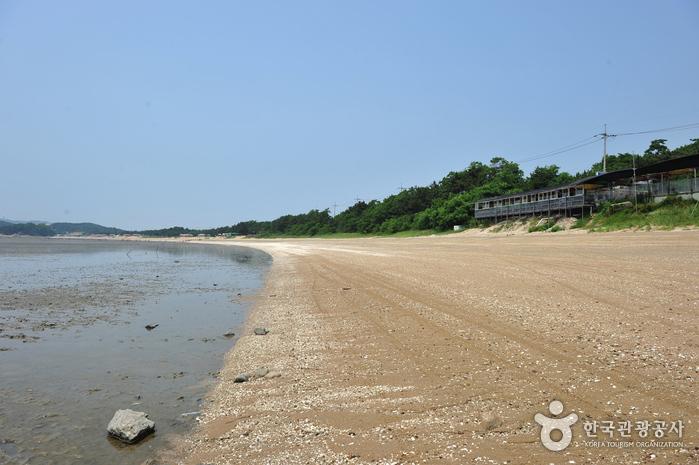Insel Yongyudo (용유도)
