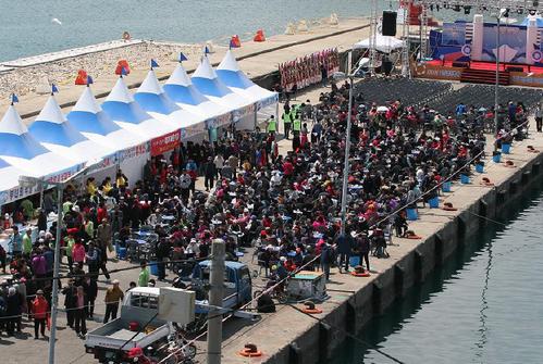 Busan Gijang Sardellen-Festival (기장 멸치축제)