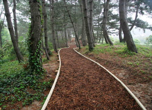 Cheollipo Arboretum (천리포수목원)