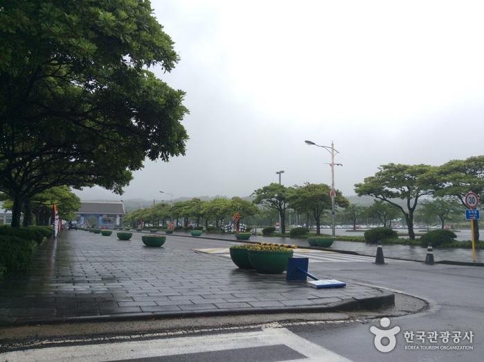 Let's Run Park (Jeju Racecourse) (렛츠런파크제주 (제주경마공원))