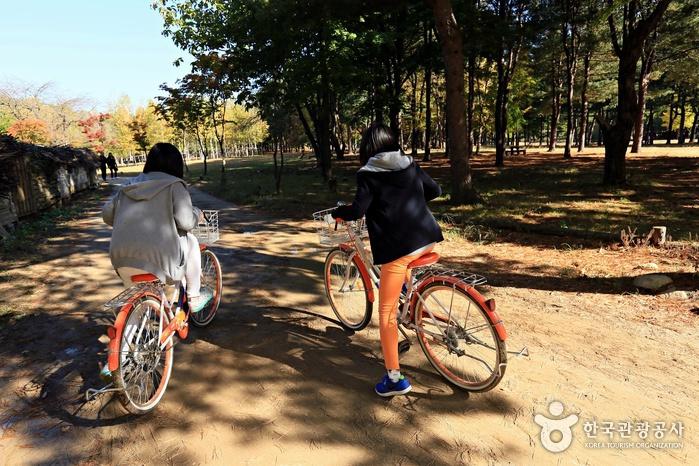 구석구석 돌아보려면 자전거가 정답