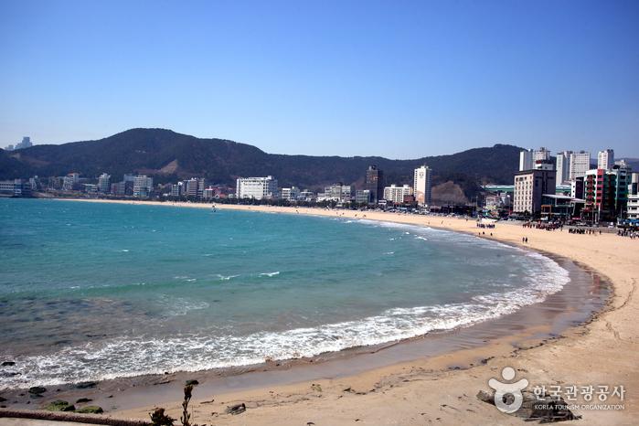 Songjeong Beach (송정해수욕장)