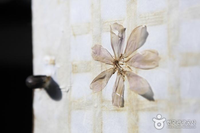 고택의 운치를 더하는 창호의 꽃잎