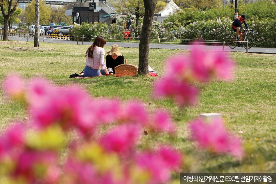 양화한강공원 잔디밭