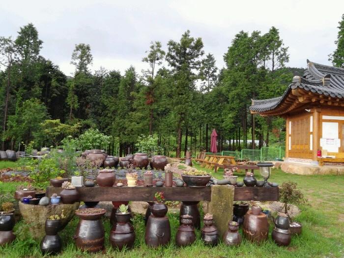 へマルヒーリングの森[韓国観光品質認証](해마루 힐링숲 [한국관광품질인증/Korea Quality])