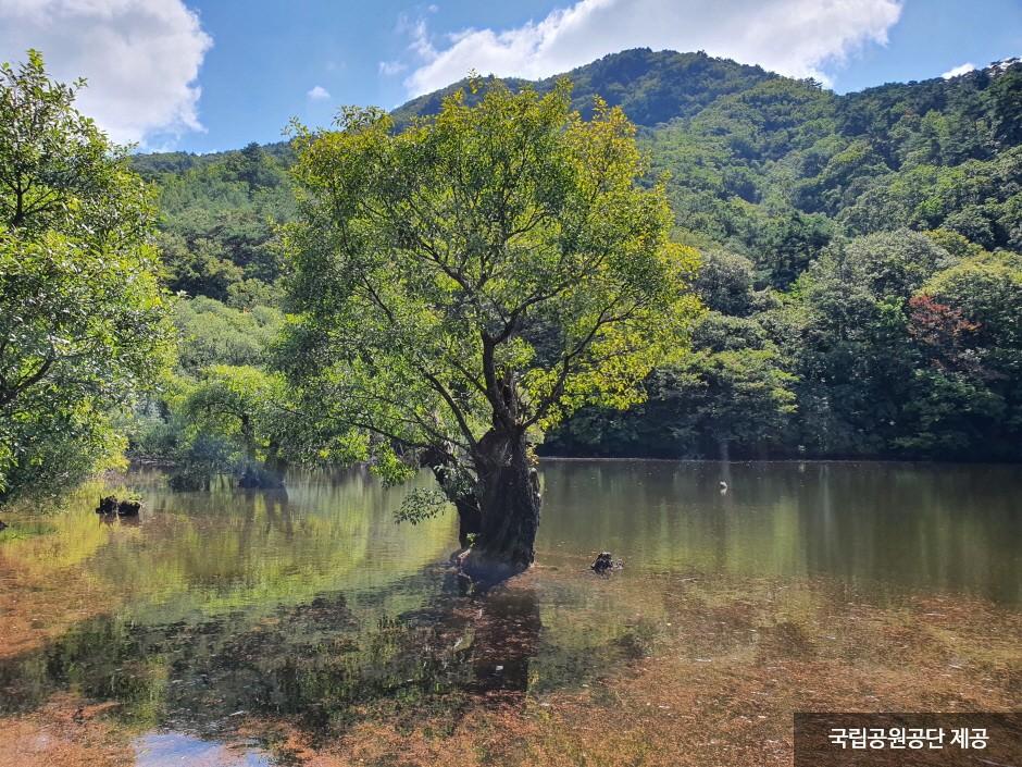 Juwangsan National Park (주왕산국립공원)