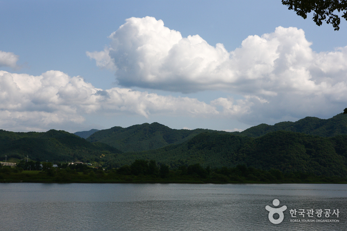 Парк Кончжичхон (공지천(황금비늘테마거리))3