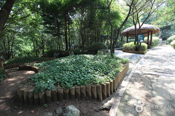 대모산공원