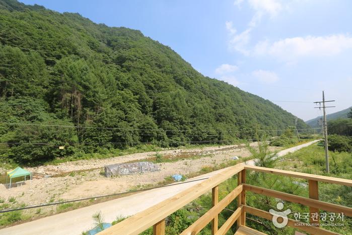 구룡산(강원)