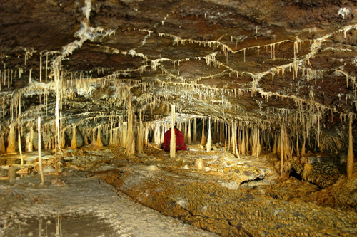 Dangcheomuldonggul Cave [UNESCO World Natural Heritage Site] (당처물동굴 [유네스코 세계자연유산])