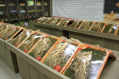 Hongcheon Ginseng Hanu Myeongpum Festival (홍천 인삼한우명품축제)