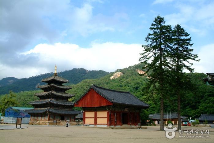 Beopjusa Temple (충북 ...