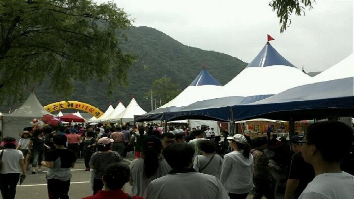 정선군 곤드레 산나물축제 2018