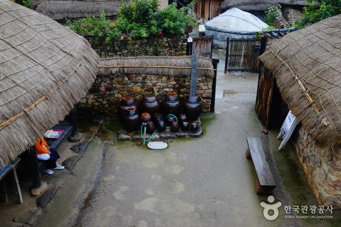 최선준가옥의 전경-위에서 아래로 내려다 본 시각이다. 양쪽에 초가지붕이 보이고 가운데 왼쪽으로 돌담아래 장독대들이 옹기종기 모여 있다.