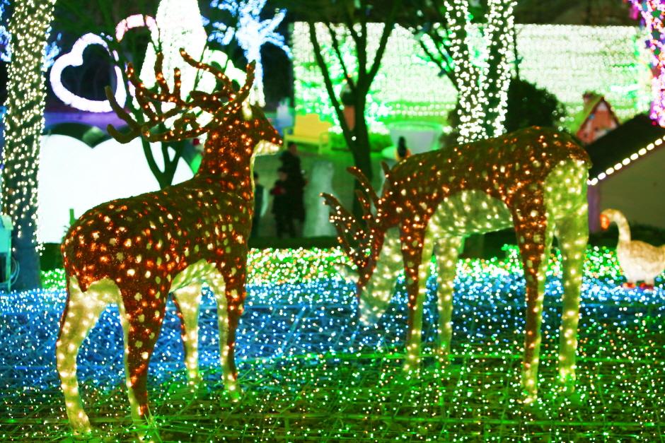 安山星光村Animal & Heart Village燈節(안산별빛마을 애니멀 & 하트빌리지 빛축제)