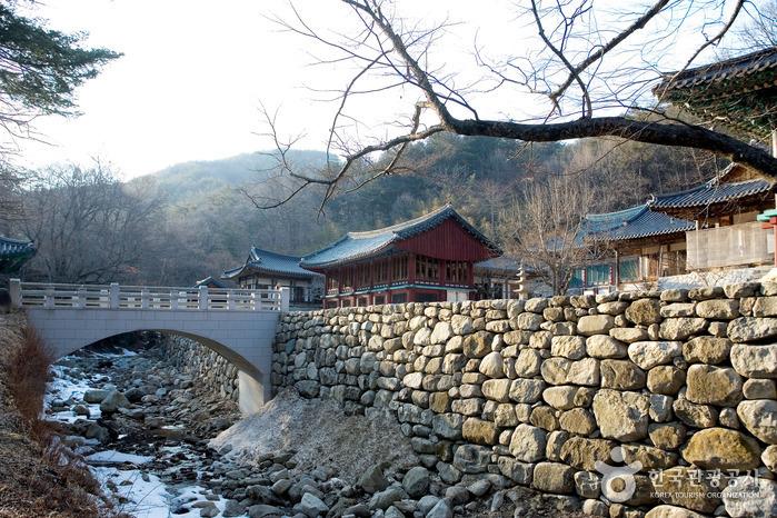 김천의 산천 수도산과 청암사에 여름여행을 떠나다