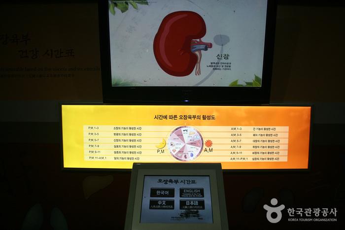Kulturzentrum für traditionelle Medizin auf dem Yangnyeongsi Daegu (대구약령시 한의약문화관)